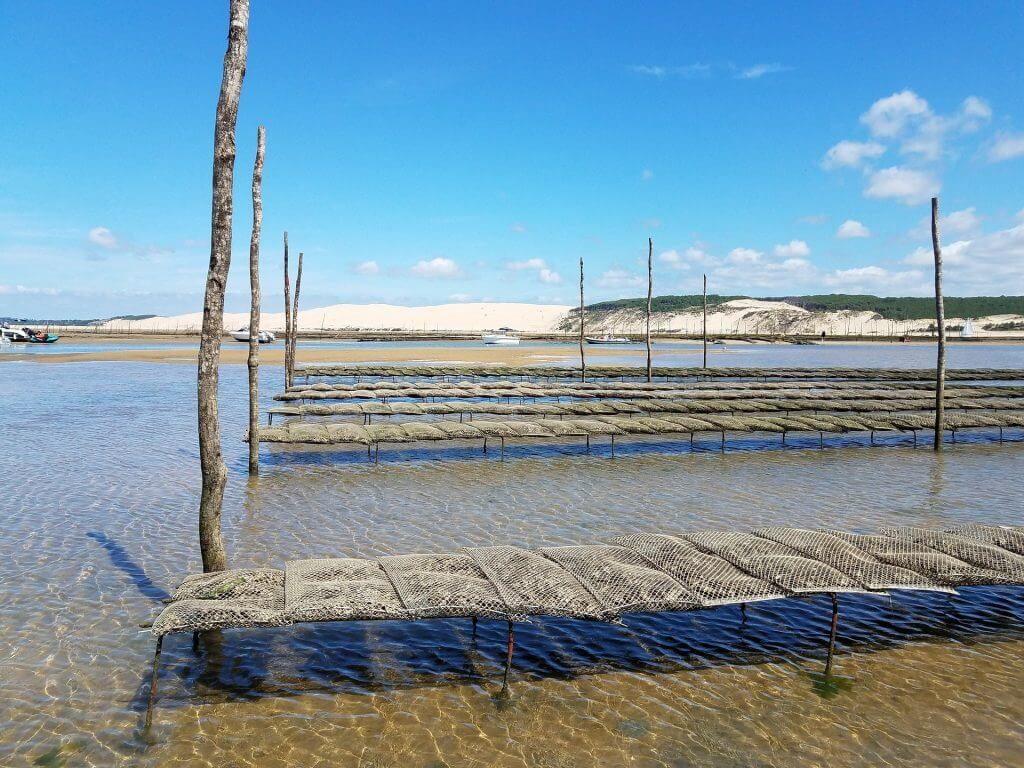 Port ostréicole proche des villages vacances du Bassin d'Arcachon