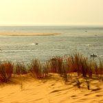 dune-you-pilat-2050669_1920